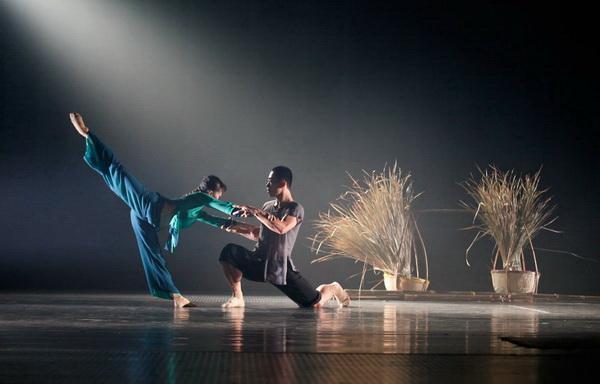 Múa đương đại – Nghệ thuật của sự tinh tế